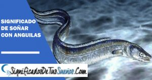 que significa soñar con anguilas