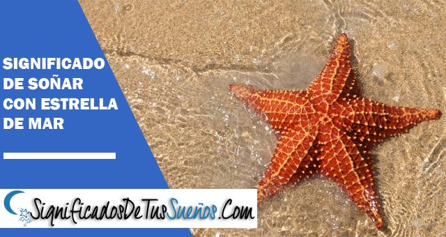 Significado De Soñar Con Estrellas De Mar Todos Sus Significados Aquí
