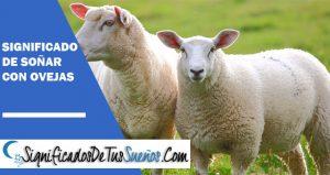 que significa soñar con oveja