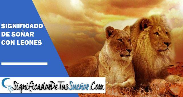 ¿Qué significa soñar con leones?