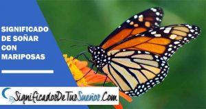 Significado De Soñar Con Mariposas Qué Significa
