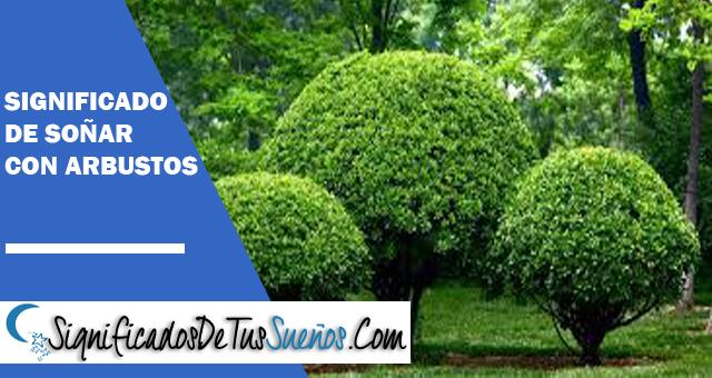 Significado de soñar con arbustos