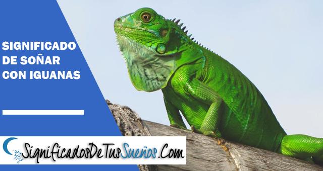 Significado de soñar con iguanas