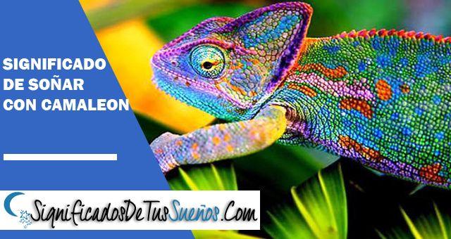 Significado de Soñar con camaleón